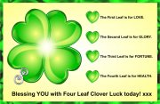 Four Leaf Clover For Luck!