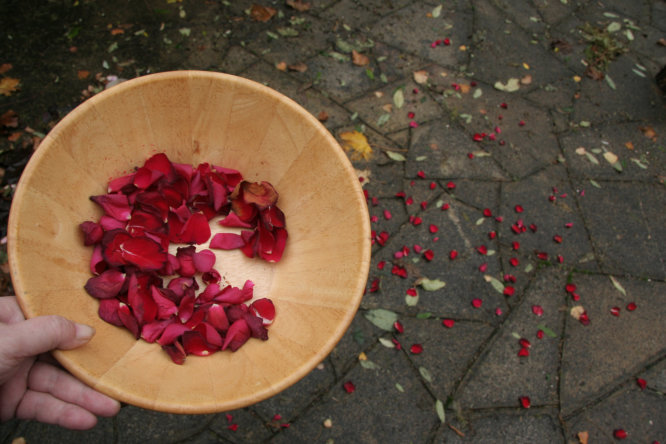 Blessing the property with magic love rose petals